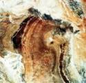 Multispectral scanner reveals lithologic and